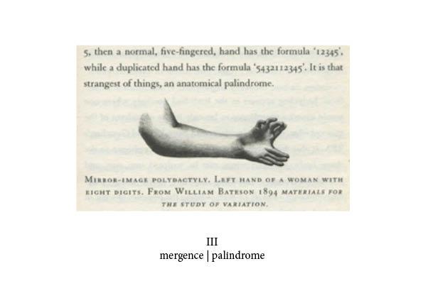 http://www.juliaamelie.com/files/gimgs/24_mutant-book-print31.jpg